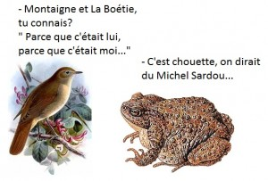 Montaigne et La Boétie